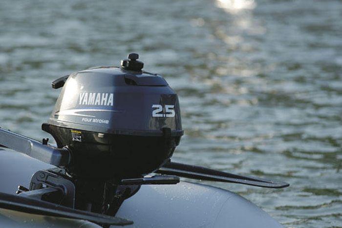 Yamaha F 2,5 AMHS